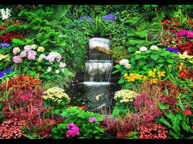 Необыкновенный цветочный сад. Дача ТВ