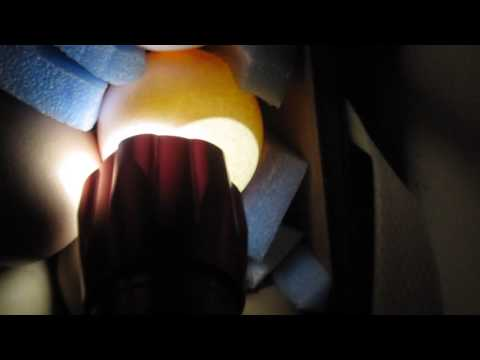 Инкубатор «Блиц Норма» 9-е сутки инкубации. Проверка яиц на оплод, проветривание инкубатора.