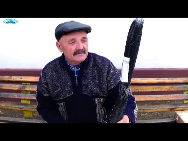 Саженцы винограда из Польши. Посылка.