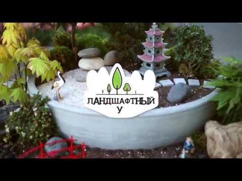 Ландшафтный бум. Серия 8. Японский сад с украинской душой