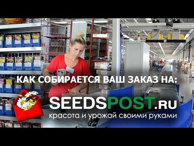Обратная сторона seedspost.ru Покажем вам то, что боятся показать другие.