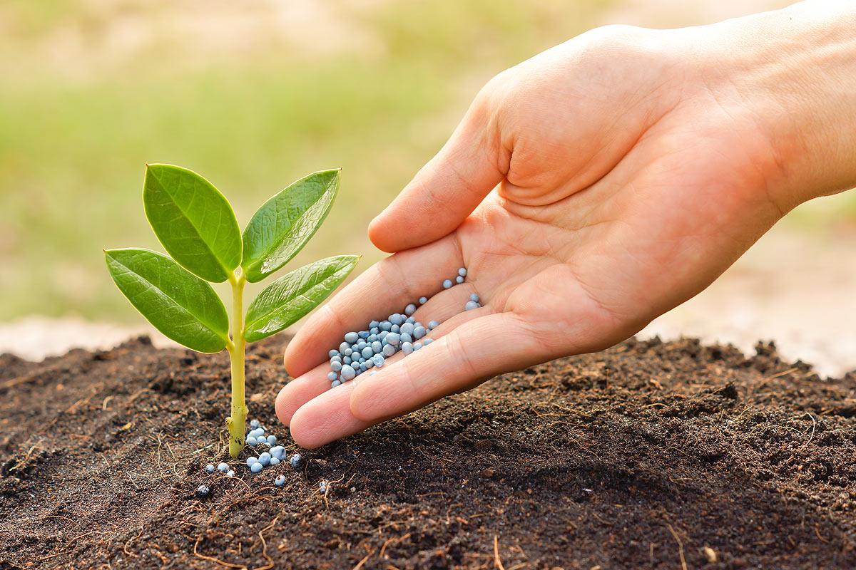 Питательные вещества и минеральные удобрения